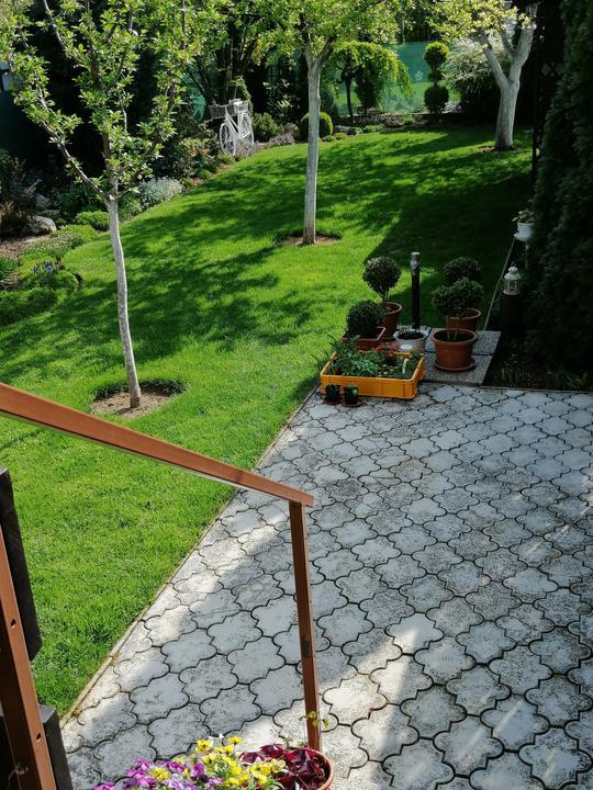 Záhrada 2021 - Obrázok č. 31