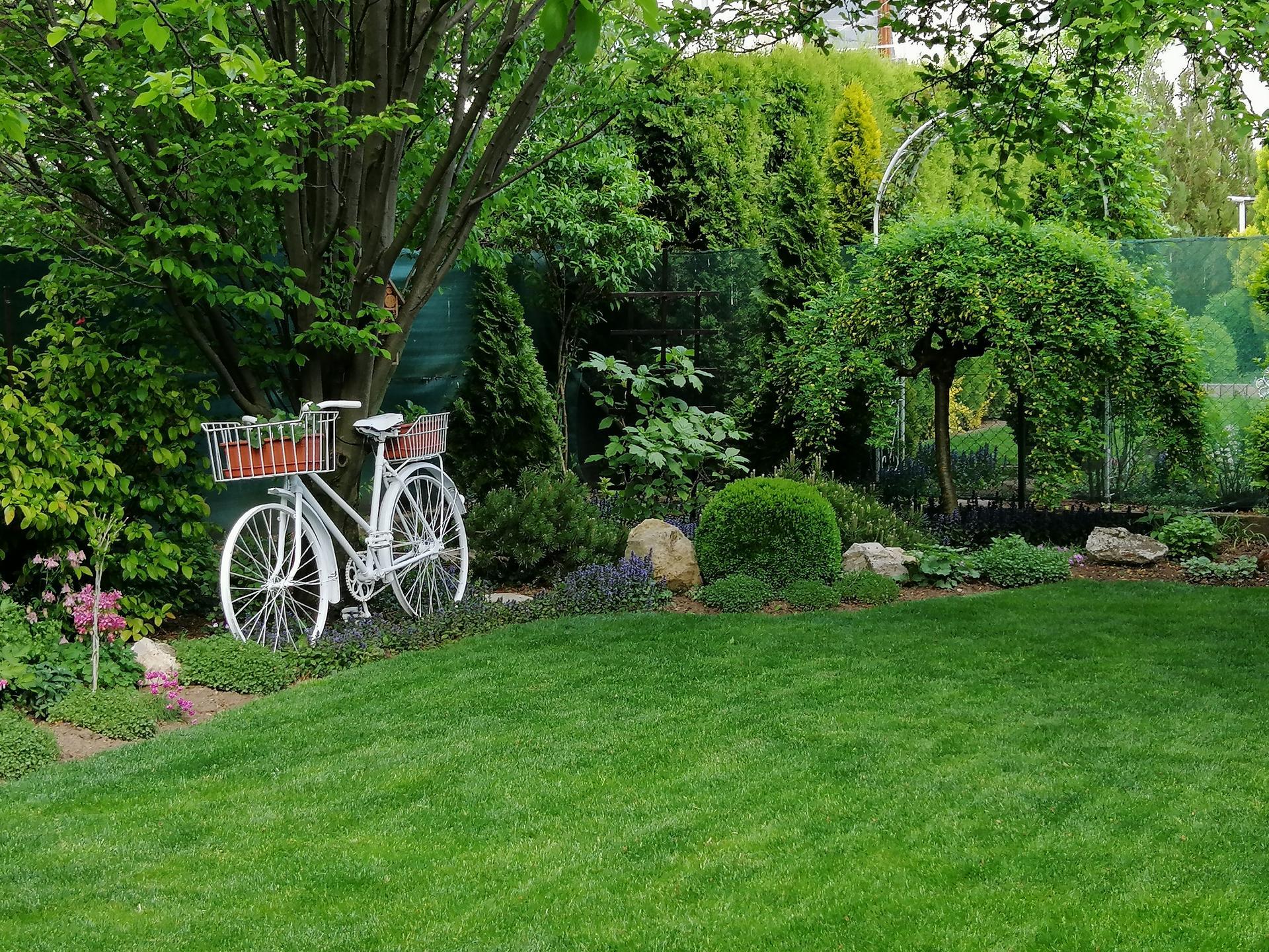 Záhrada 2021 - Obrázok č. 69