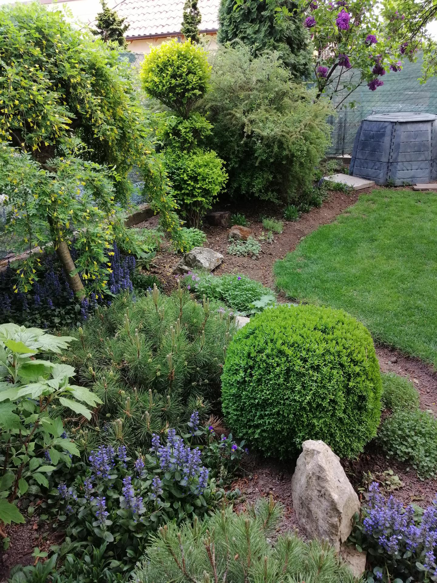 Záhrada 2021 - Obrázok č. 67