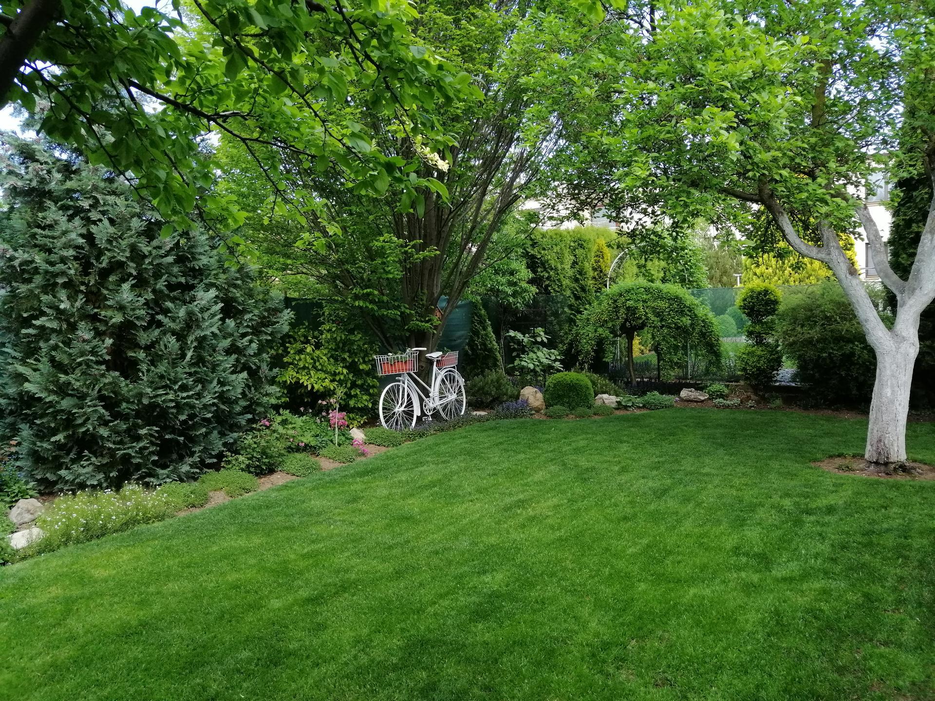 Záhrada 2021 - Obrázok č. 73