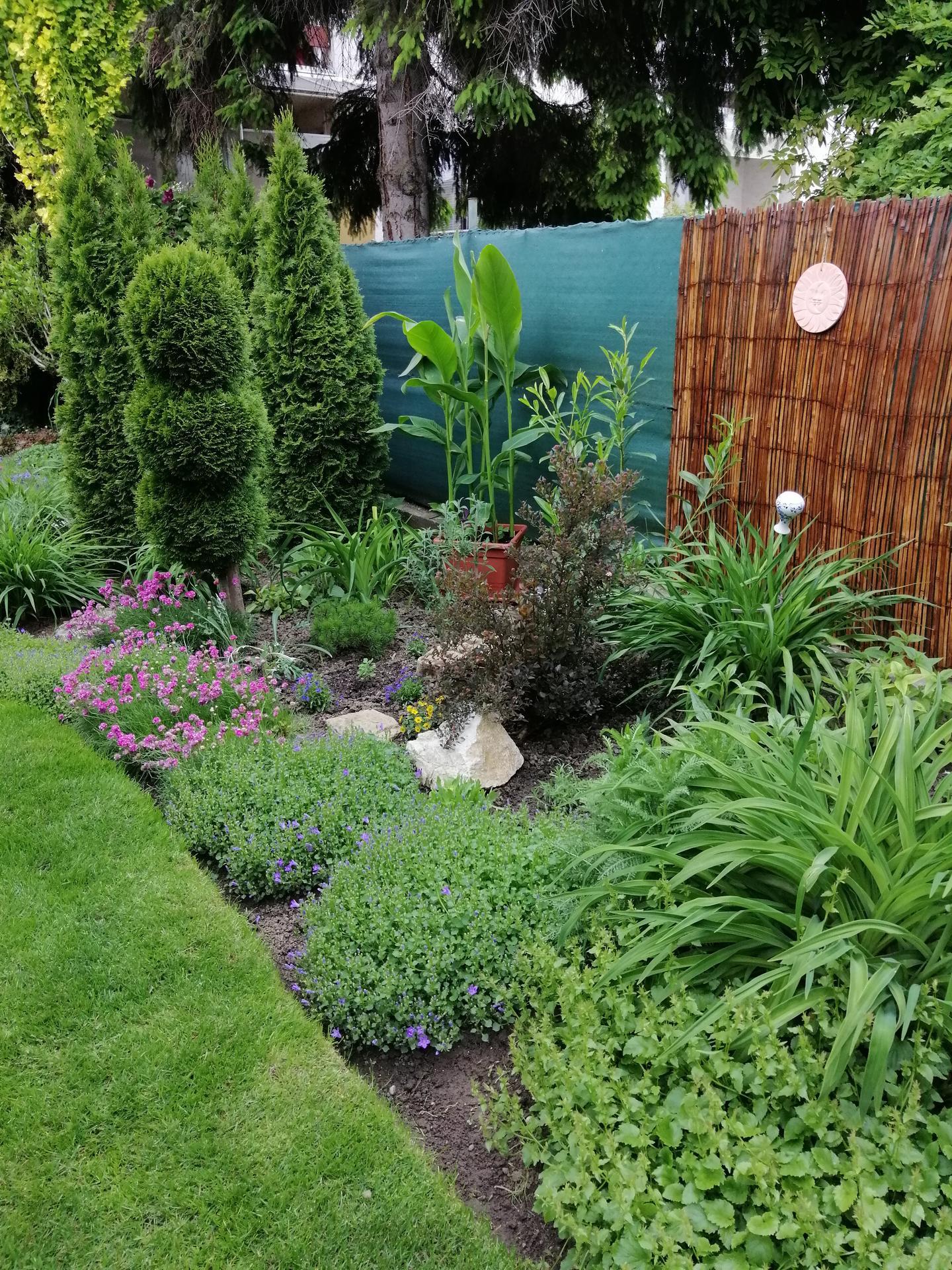 Záhrada 2021 - Obrázok č. 97