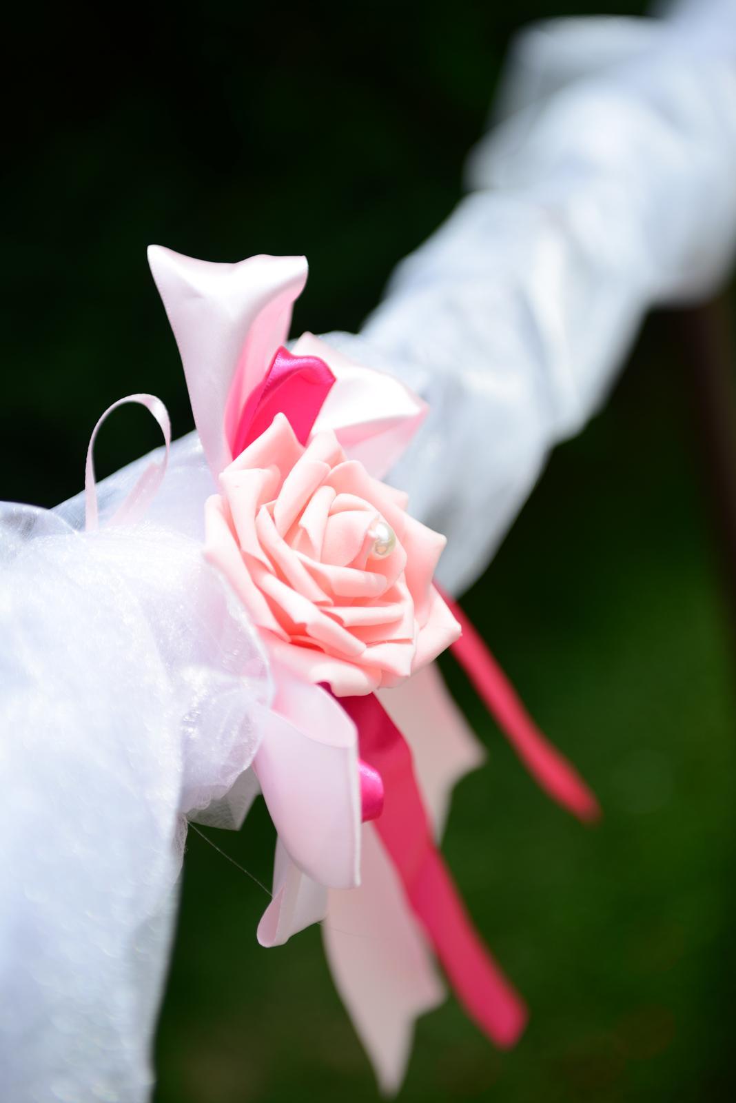 Ružové mašle - Obrázok č. 1