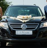 Dekorace na auto ženicha a nevěsty včetně SPZ,