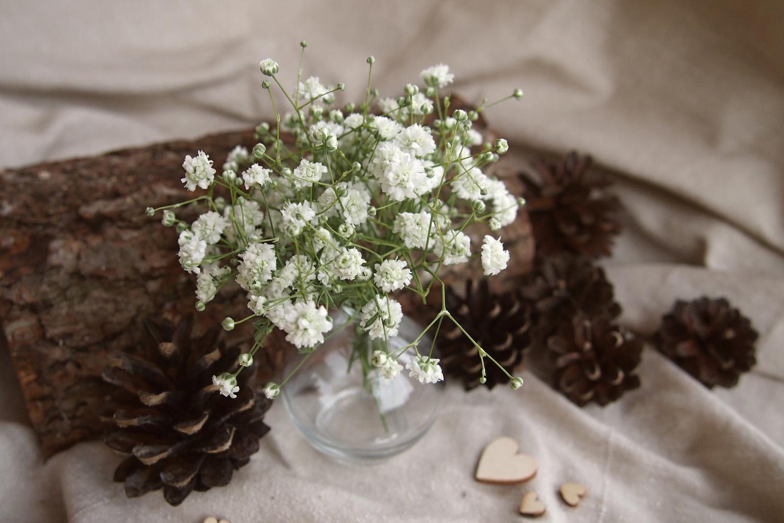Už je hotovo :-) - nevěstin závoj.. moje oblíbená :-)