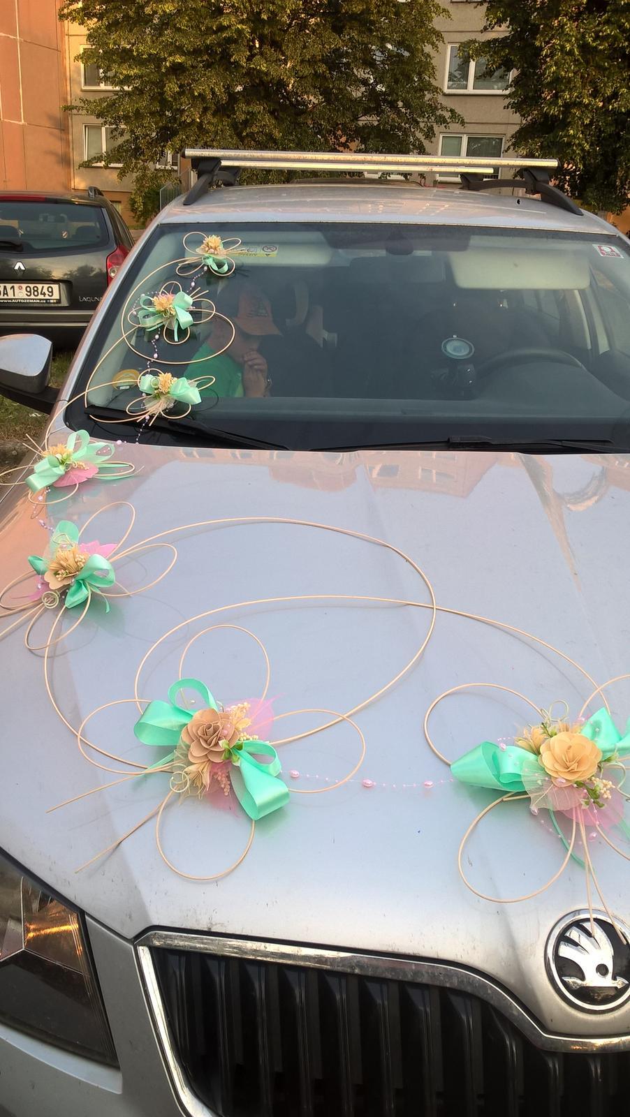 Motýlci na auto mintovo-růžové - Obrázek č. 1