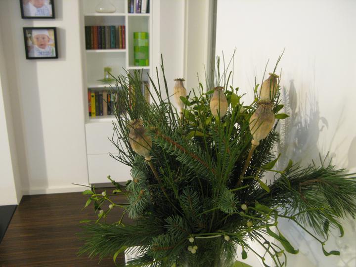 Nas dom - Vianoce 2011