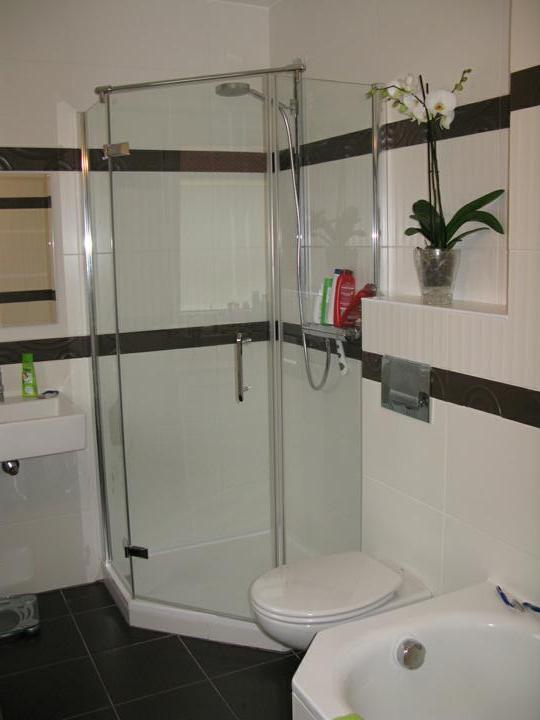 Nas dom - Kupelna so sprchovym kutom a sanitou, 2010