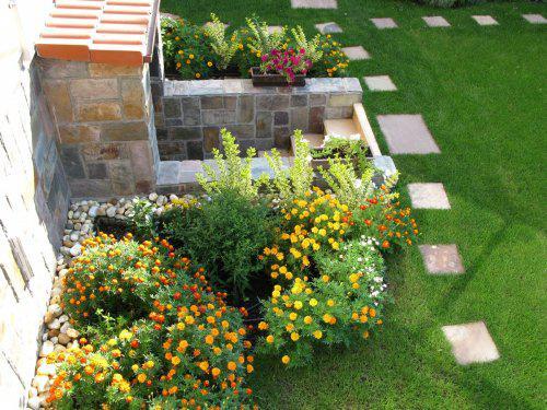 Nas dom - Zahrada 2009