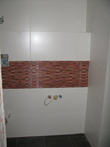 Nas dom - Hostovske wc este nedokoncene, 2009