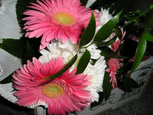 Bára a Jirka - příprava svatby 9.9.2009 v Chodově u KV - Maminkám...