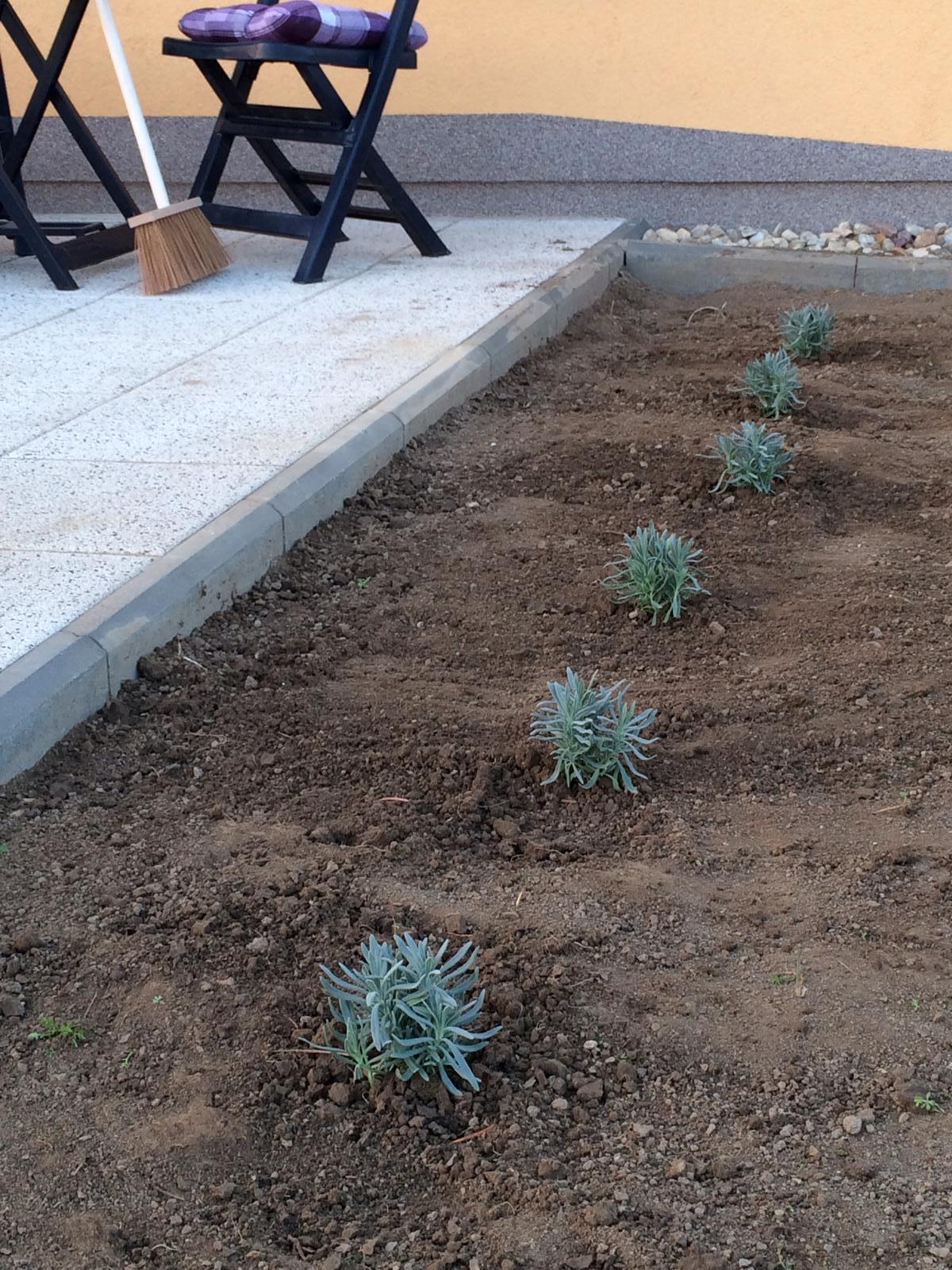 Zahrada- jak to vsechno zacalo.. - A levandulky nasazene.. Jeste druha strana terasy :)