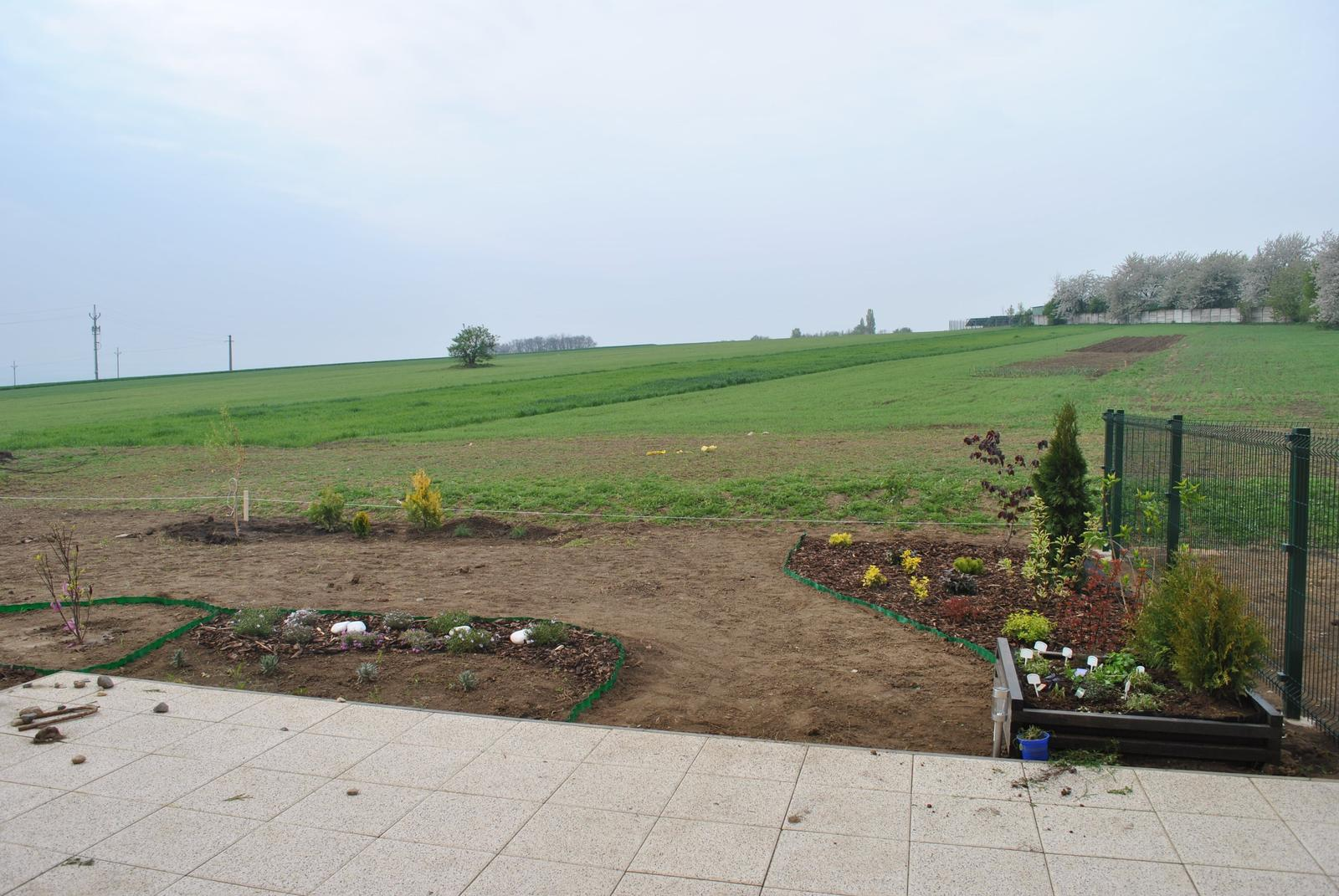 Zahrada- jak to vsechno zacalo.. - Obrázek č. 405