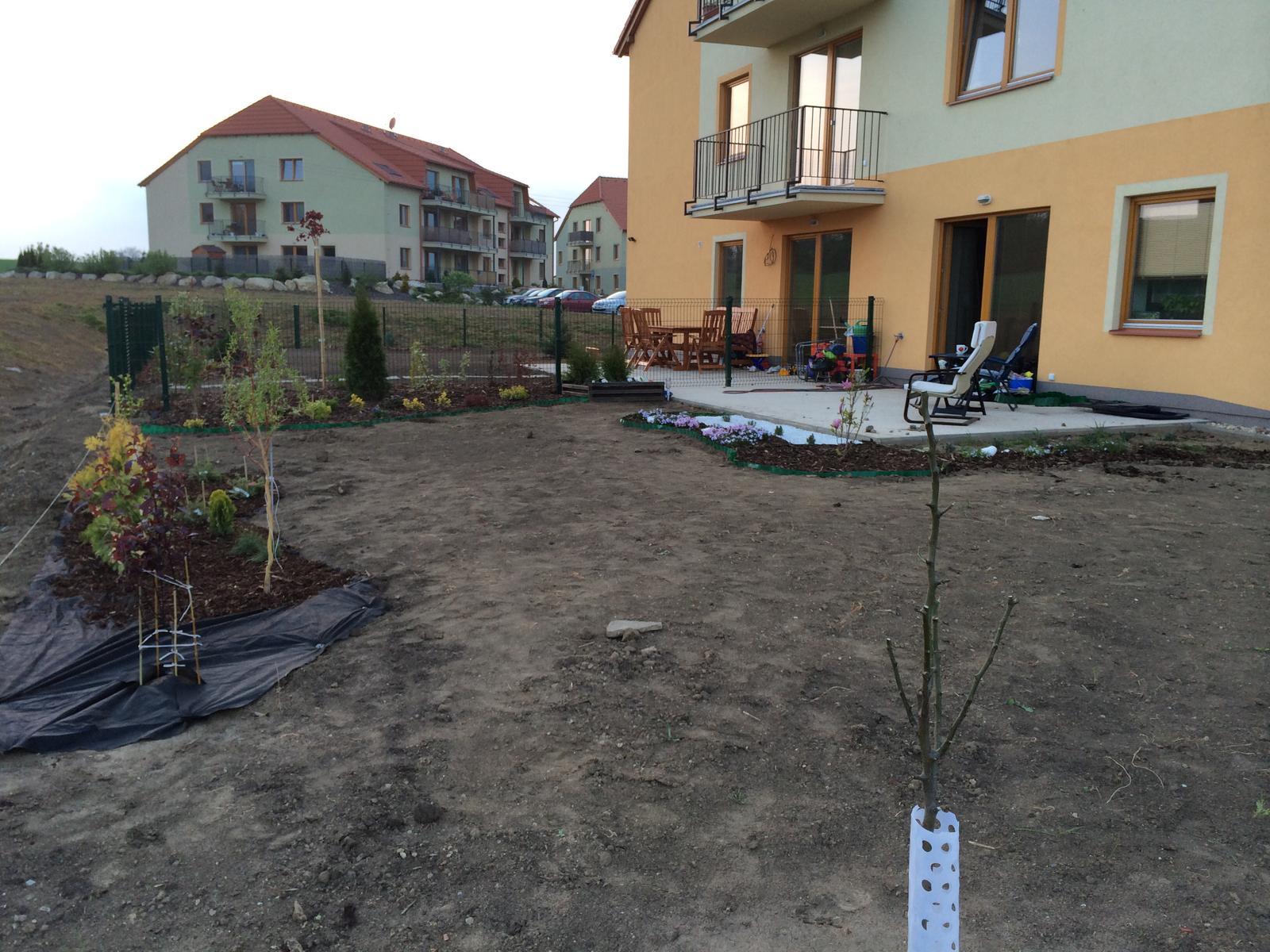 Zahrada- jak to vsechno zacalo.. - Obrázek č. 412