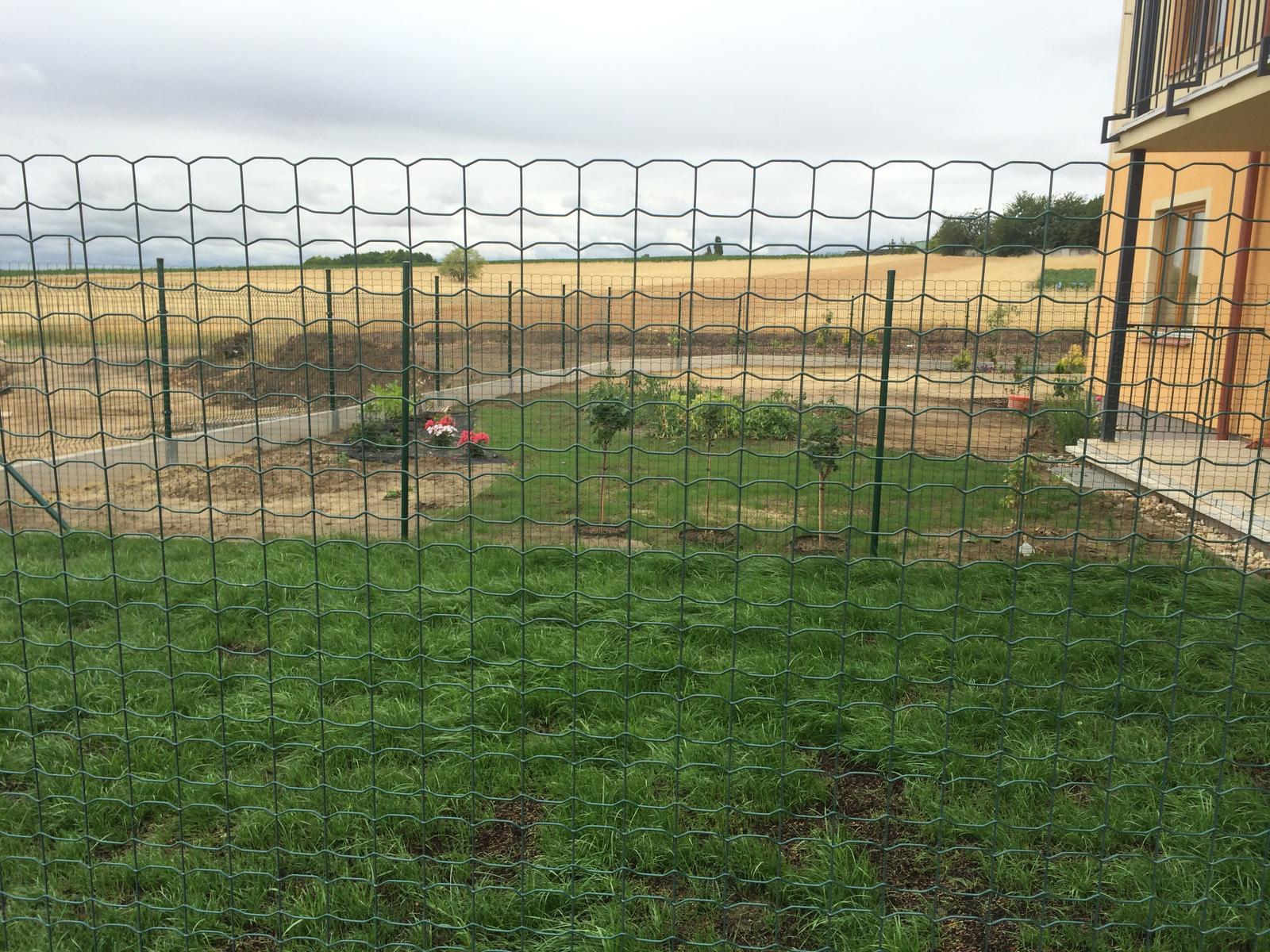 Zahrada- jak to vsechno zacalo.. - z tejto strany to uz vypada pekne zelene ( fotene cez sousedovu zahradku 2 ploty :) )