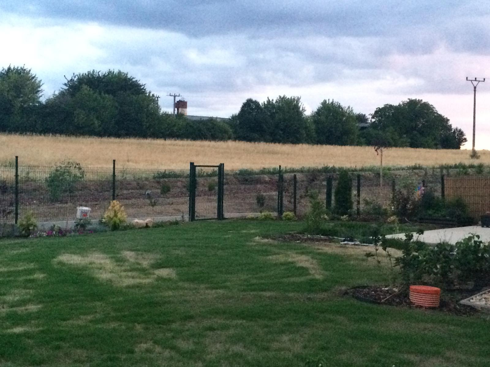 Zahrada- jak to vsechno zacalo.. - Uz se to hezky zelena :)