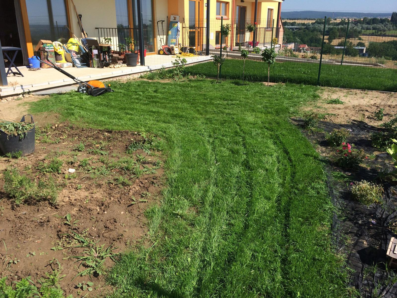 Zahrada- jak to vsechno zacalo.. - Vypada trosku ako zamat :)