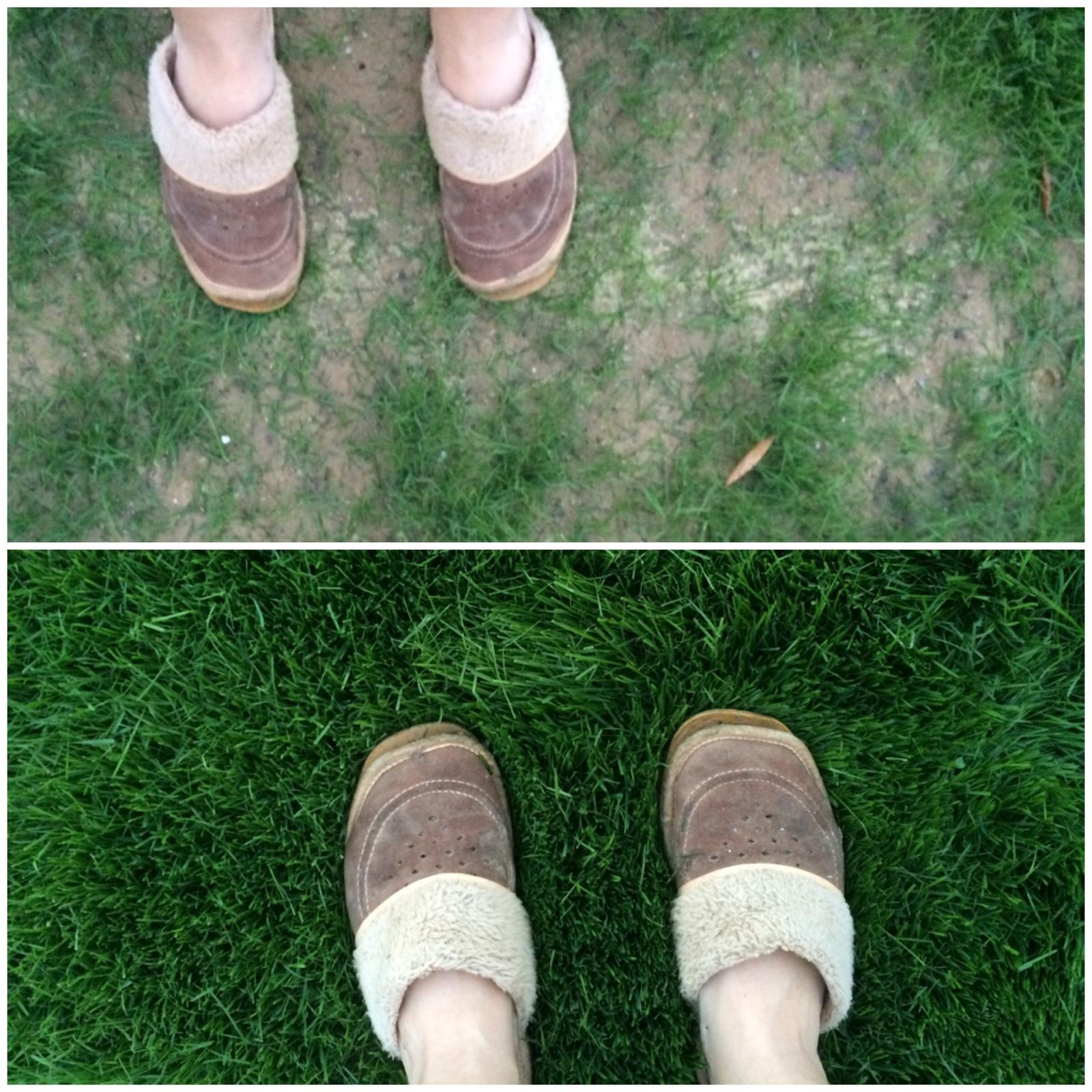 Zahrada- jak to vsechno zacalo.. - @lizaa aby to nevypadalo ze je dokonaly :-D nase nejhorsi a nejlepsi cast.. Tu vrchni uz asi nezachranime jinak nez novym zasetim..