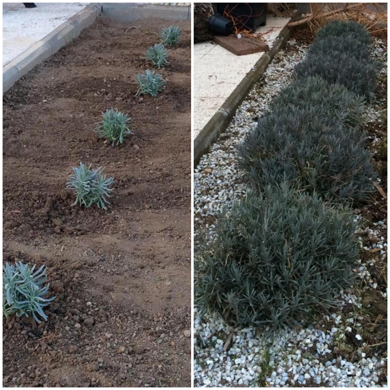 Zahradka nasa 2015 - Presne po roku