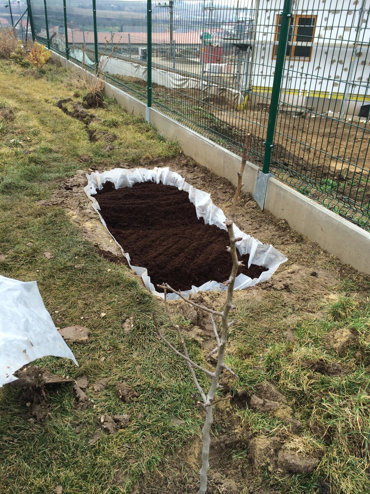 Zahradka nasa 2015 - Raselina ;)