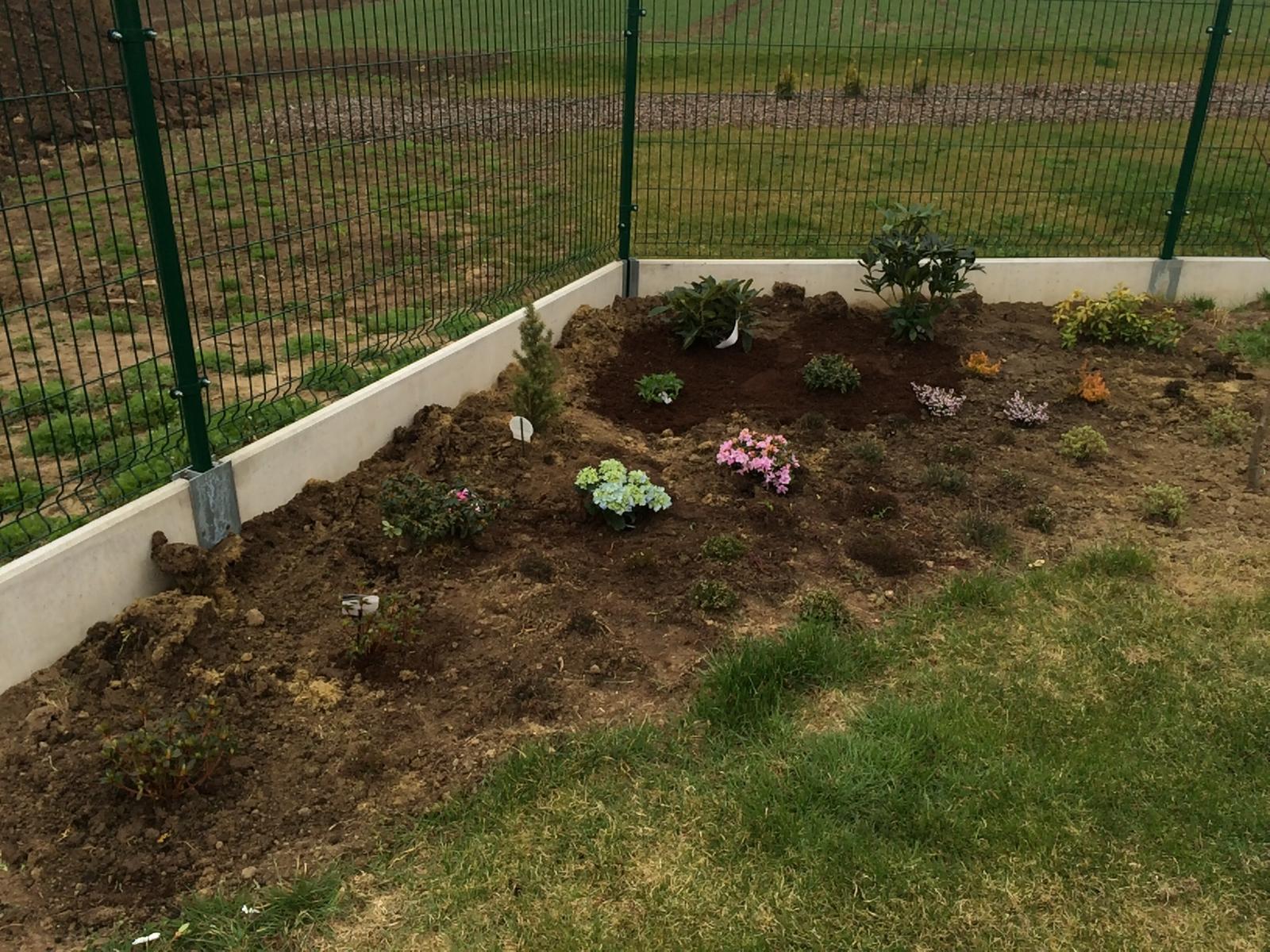 Zahradka nasa 2015 - vresoviste rozsirene o par azalek a rododendronu :)