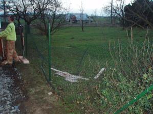 Druhý den stavby a opět škoda tentokrát na sousedovic plotu - jeřábník vzal křivo paletu OSB desek a ta celá spadla na plot:(