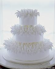 torta na jezka :)