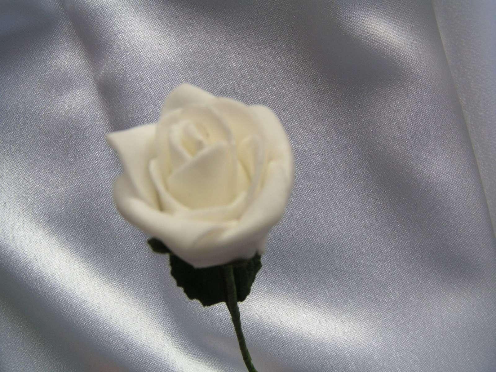 Bílá pěnová růžička - Obrázek č. 1