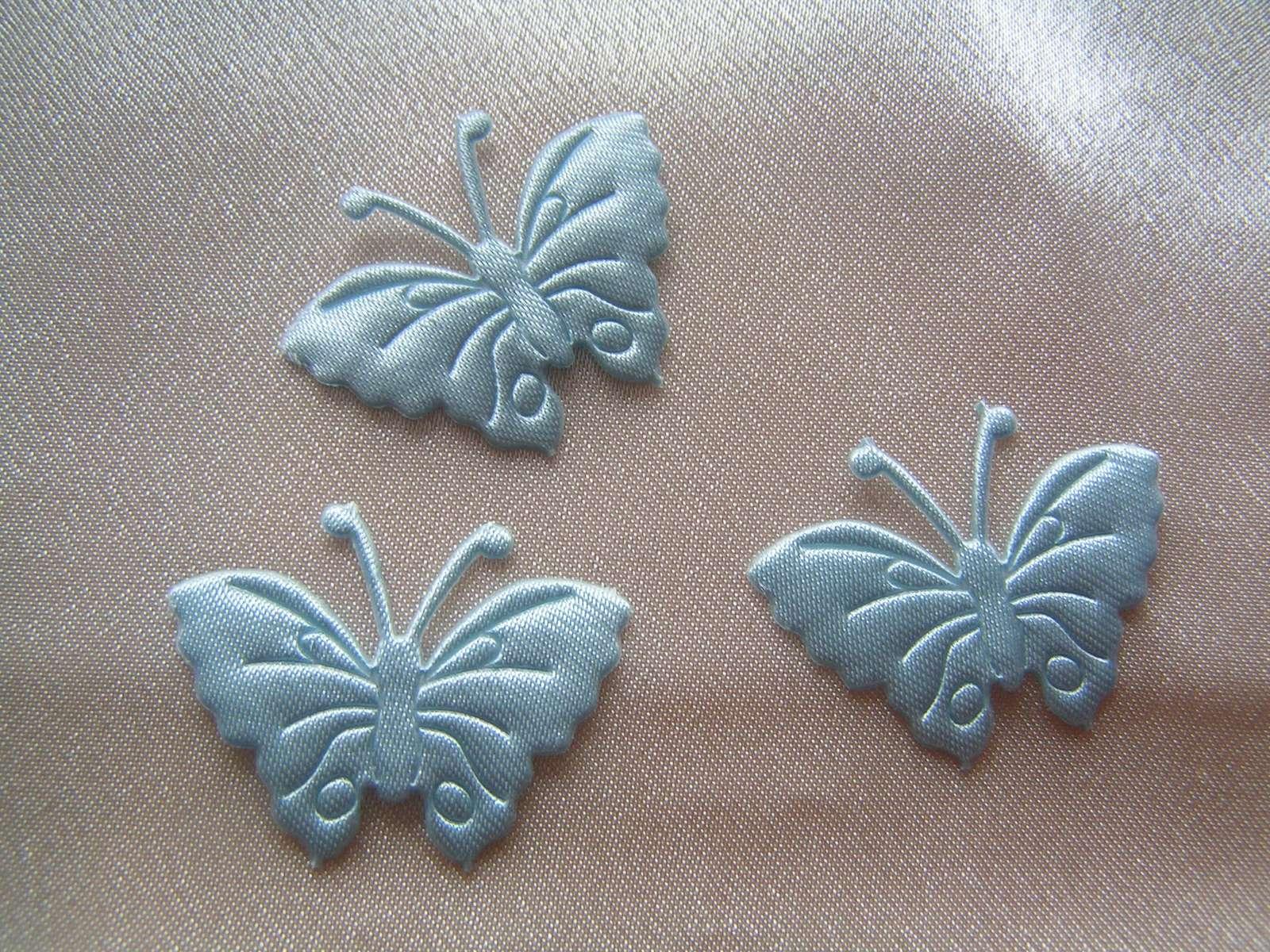 Saténoví motýlci - Obrázek č. 1