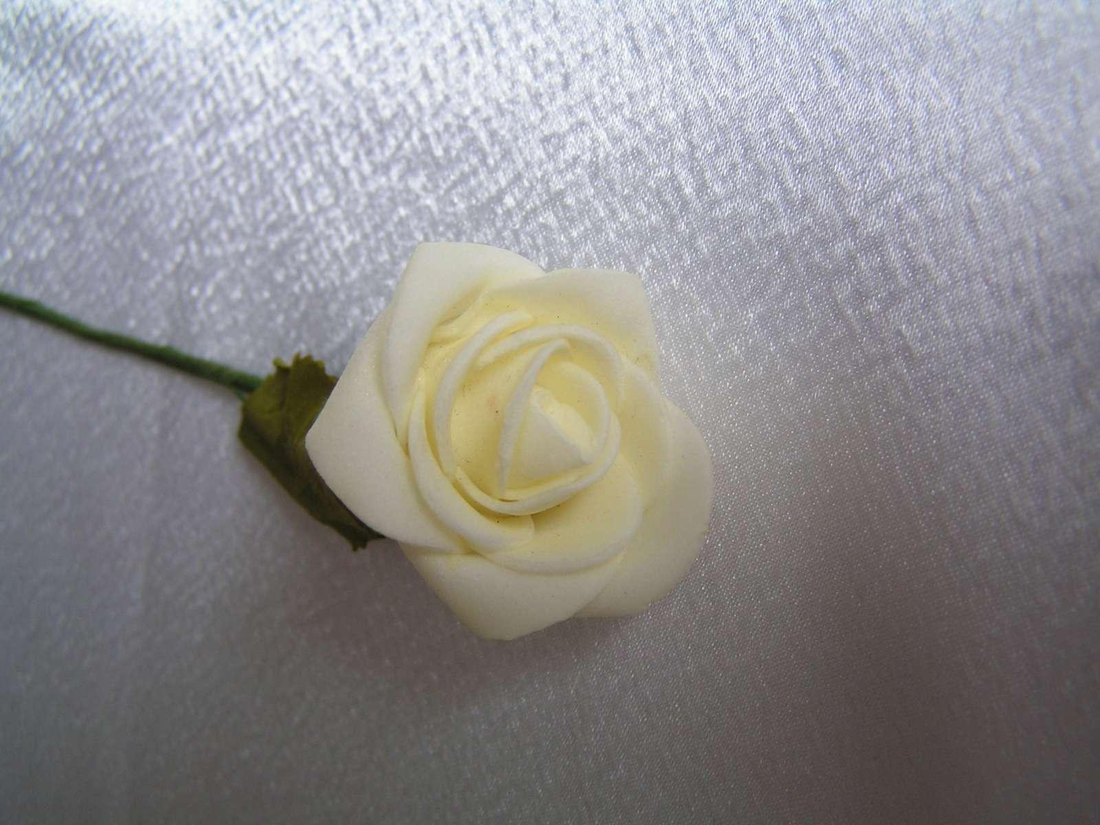 Pěnová růžička - Obrázek č. 1