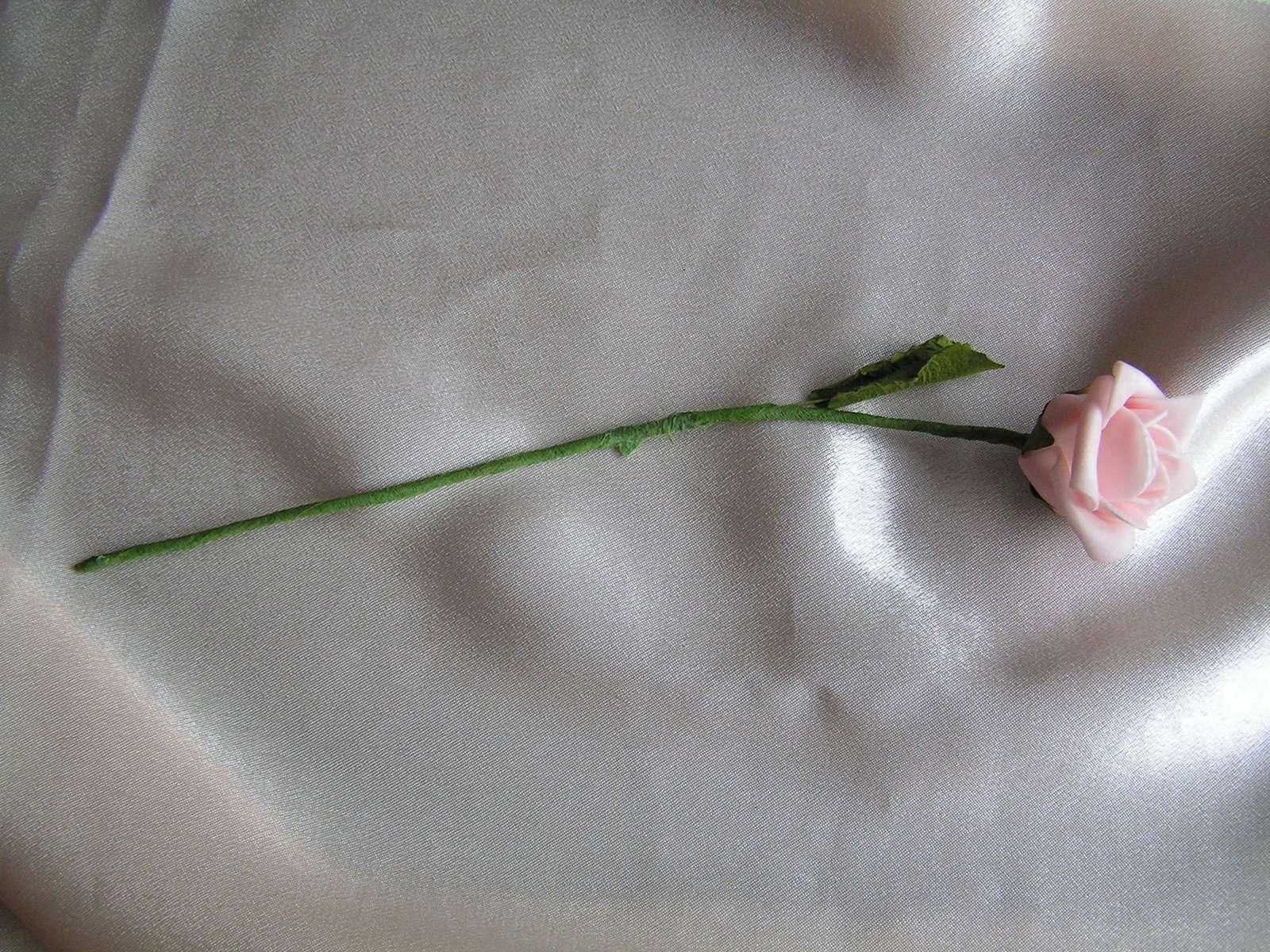 Pěnová růžička - Obrázek č. 2