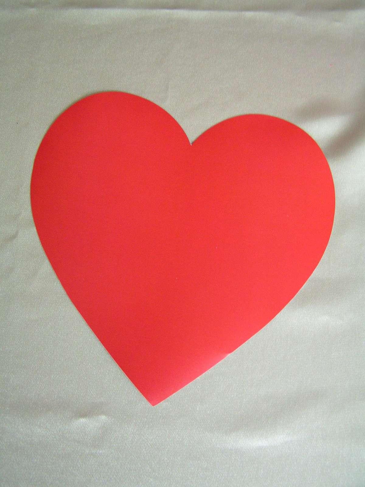 Magnetické srdce - Obrázek č. 1