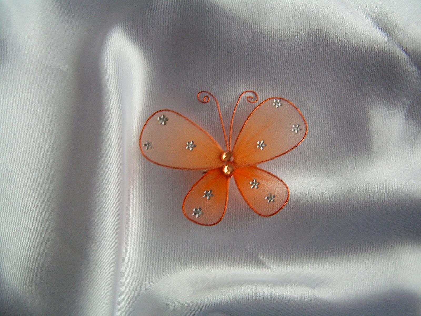 Motýl na zavíracím špendlíku - Obrázek č. 1