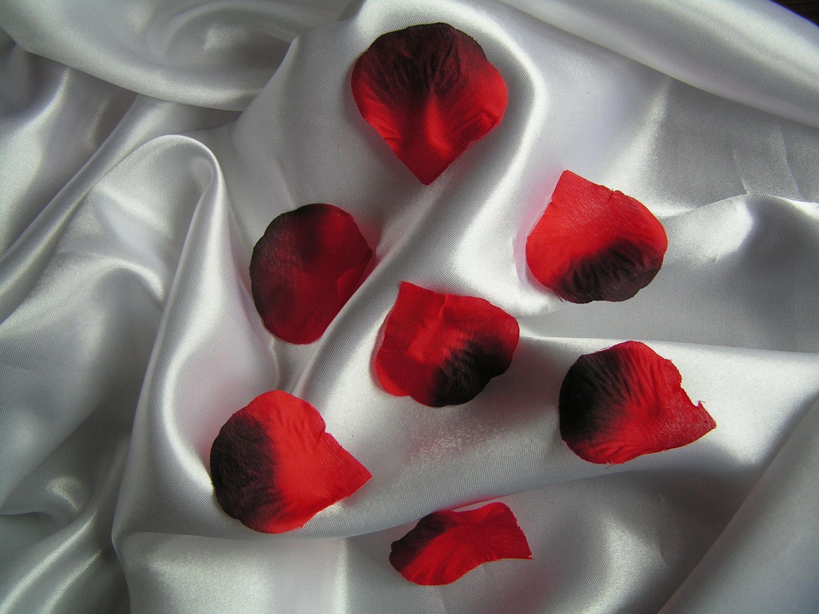 Textilní plátky růží - Obrázek č. 1
