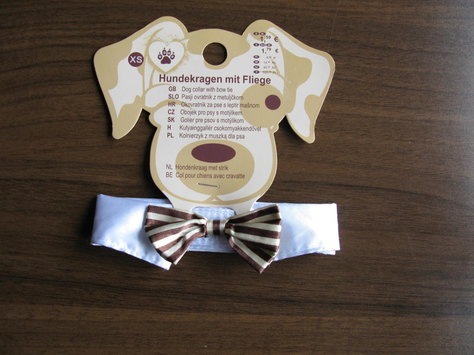Motýlek pro psa - Obrázek č. 1