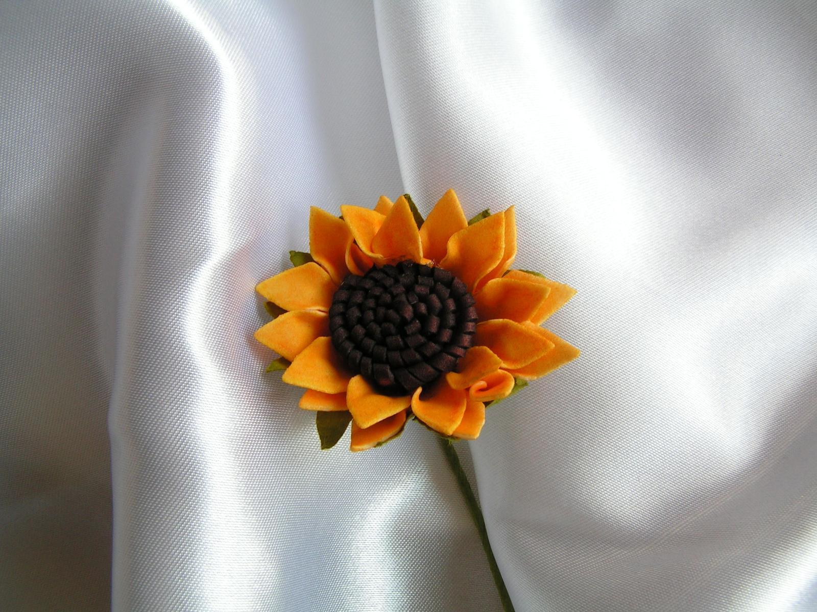 Slunečnice - Obrázek č. 2
