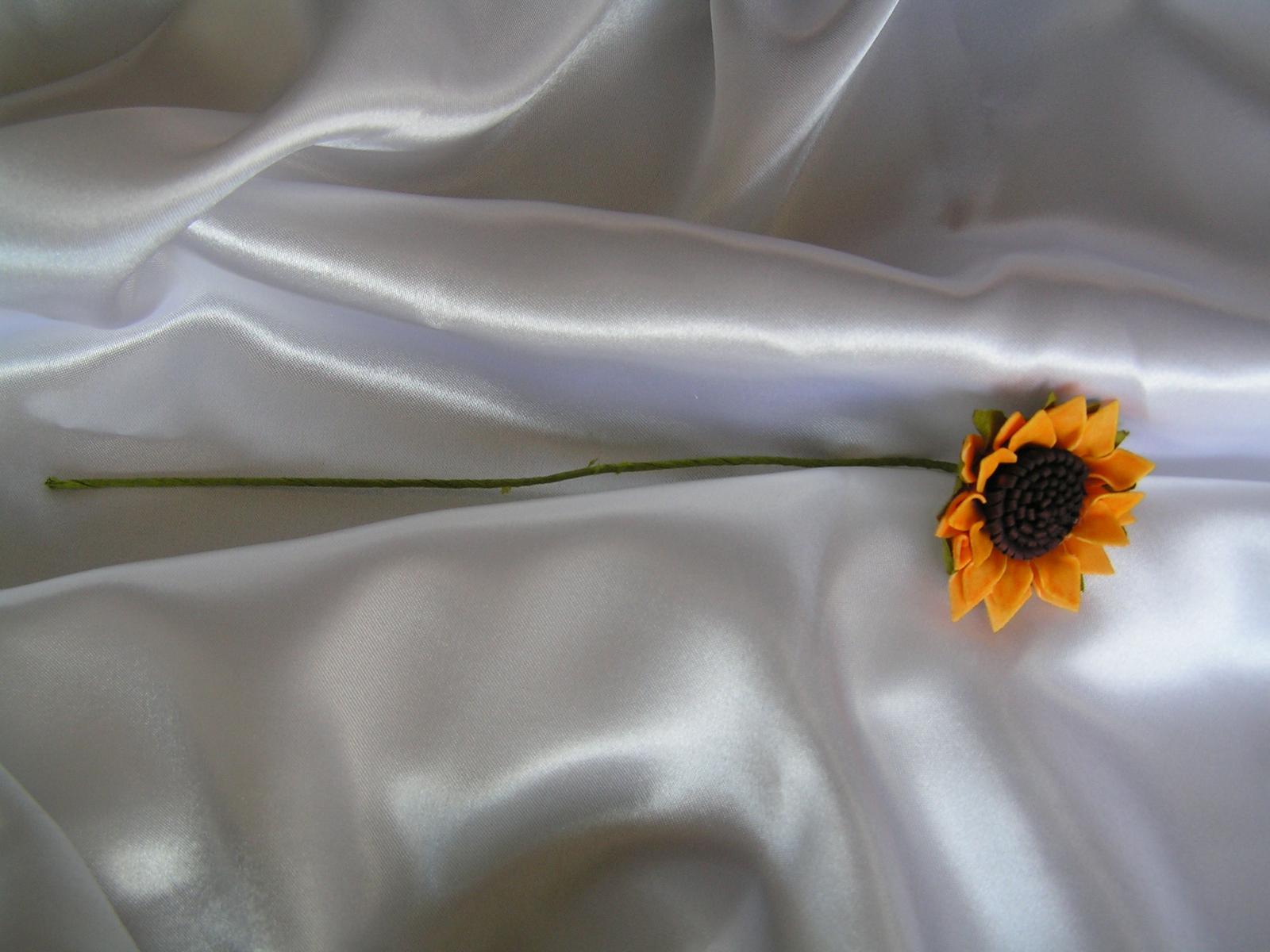 Slunečnice - Obrázek č. 3