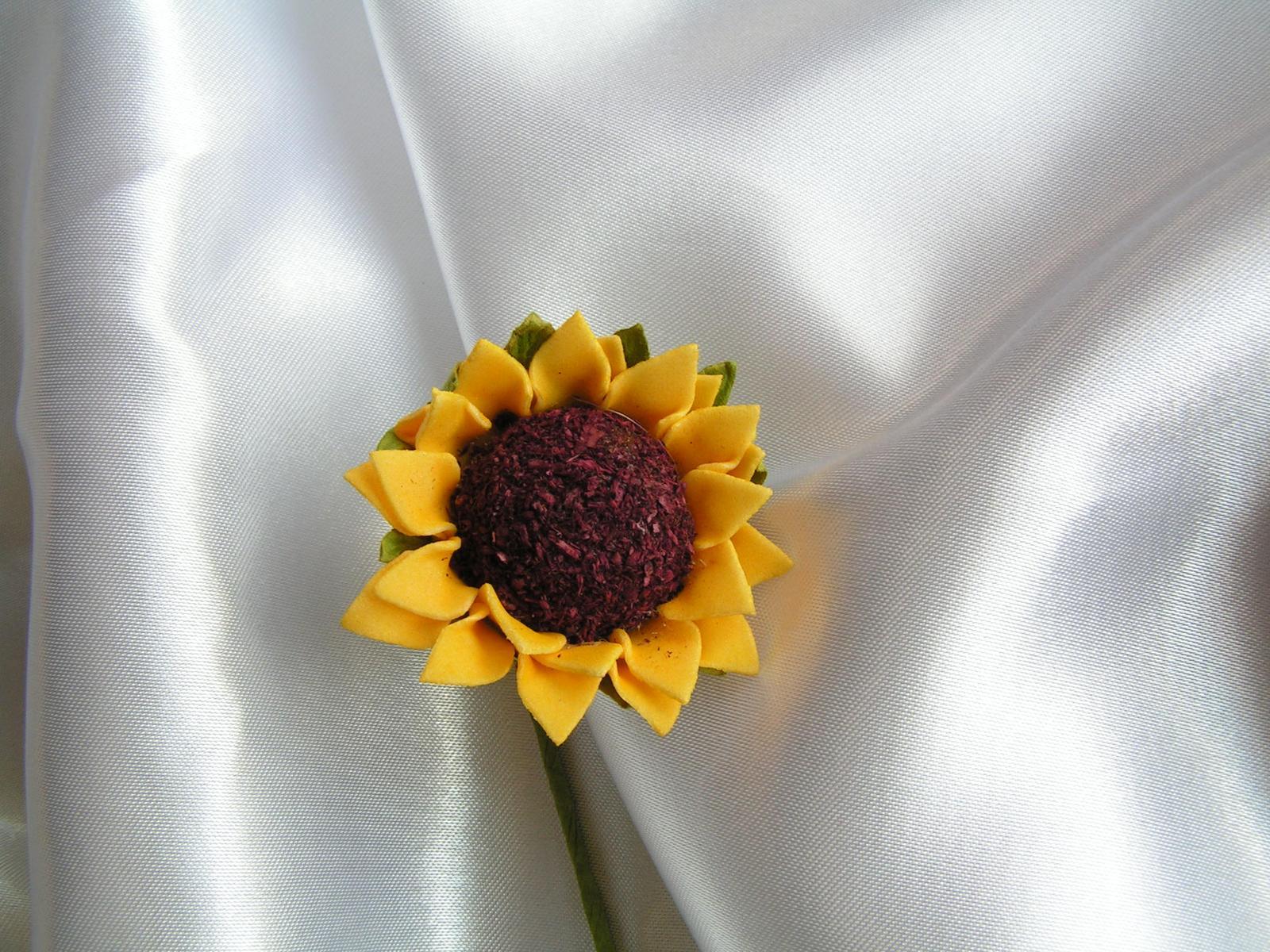 Slunečnice - Obrázek č. 1