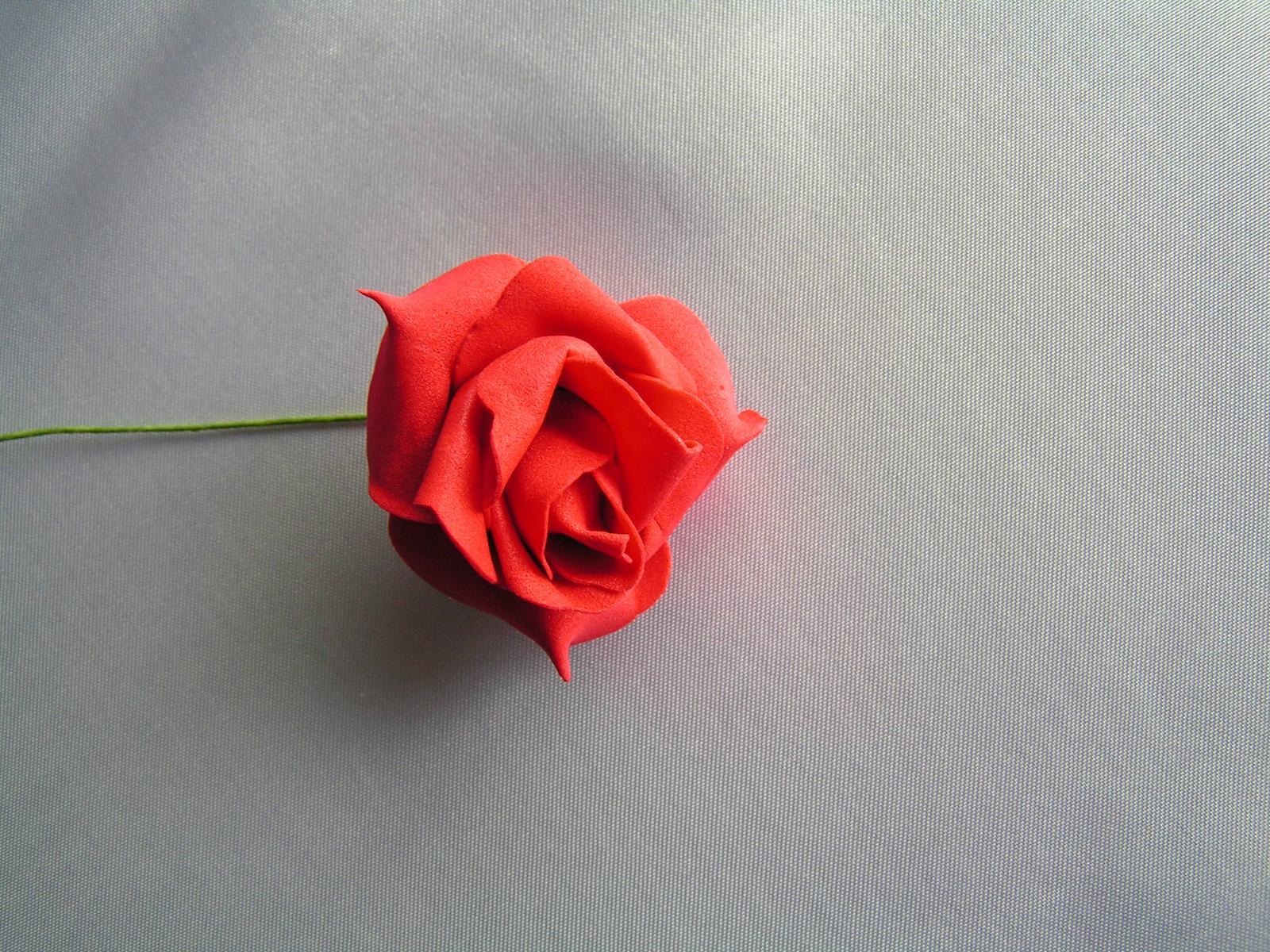 Červené pěnové růže - Obrázek č. 1