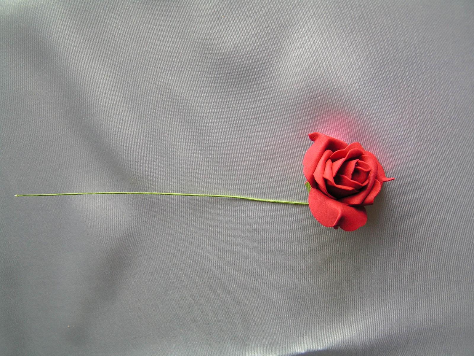 Tmavě červené pěnové růže - Obrázek č. 1