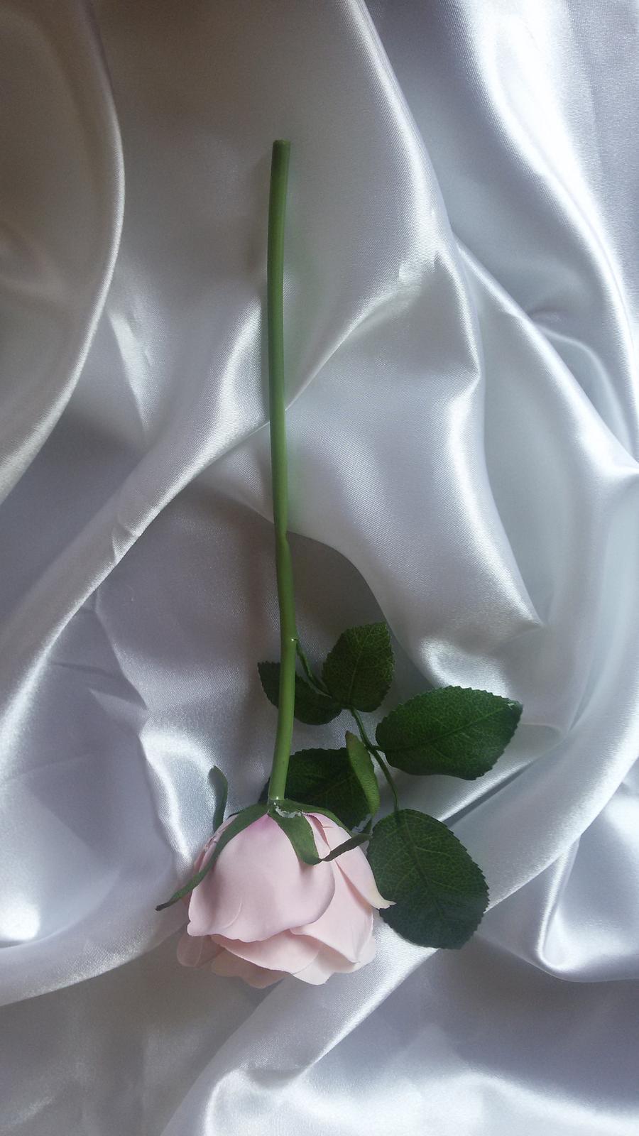 Růžová růže s listy - Obrázek č. 2