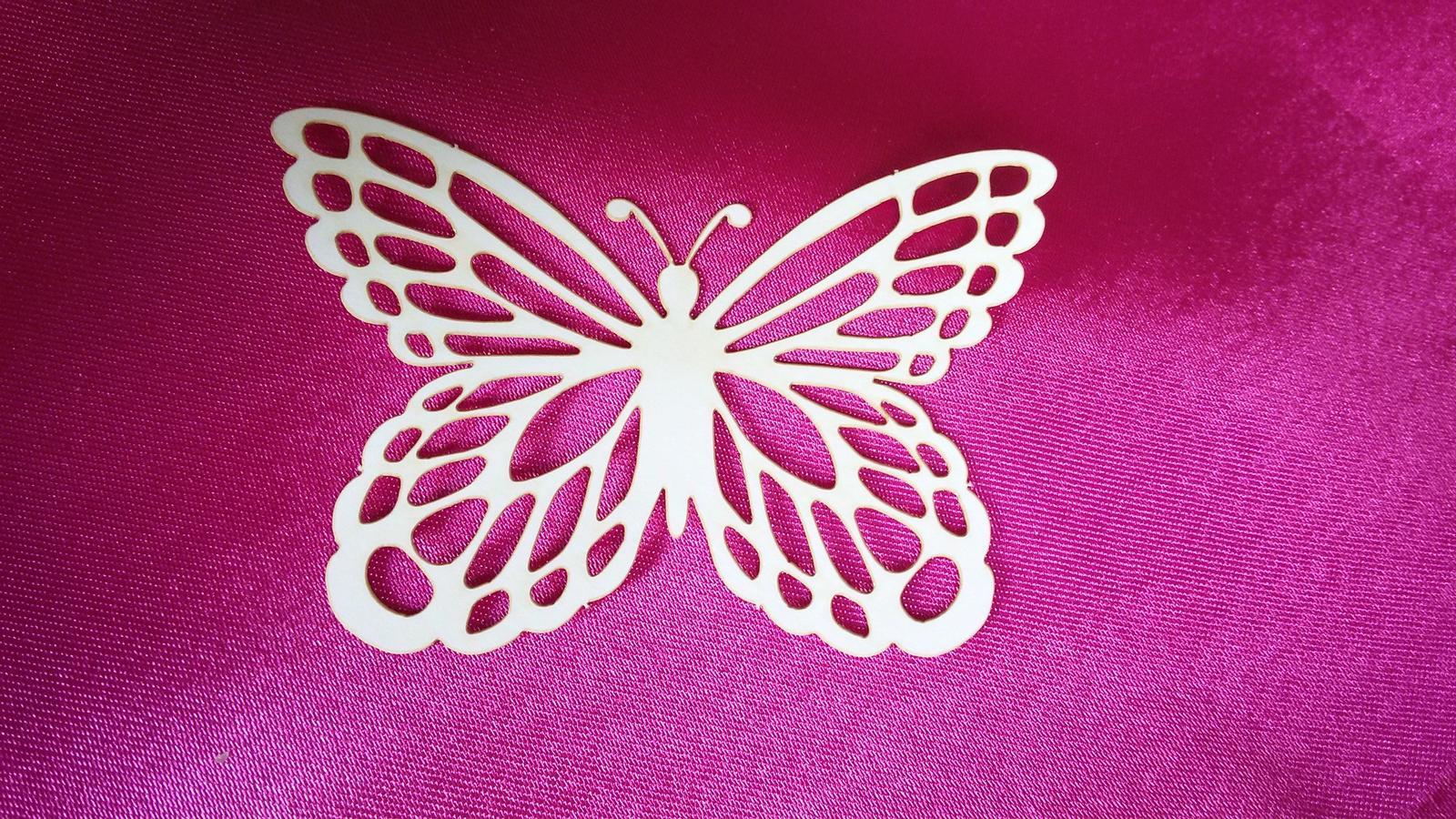 Motýl - Obrázek č. 2
