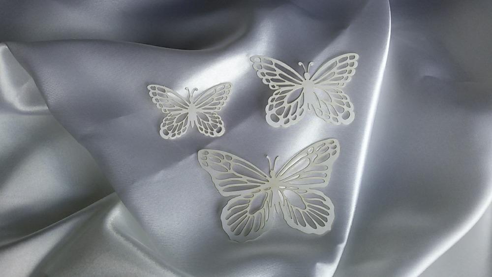 Motýl - Obrázek č. 1