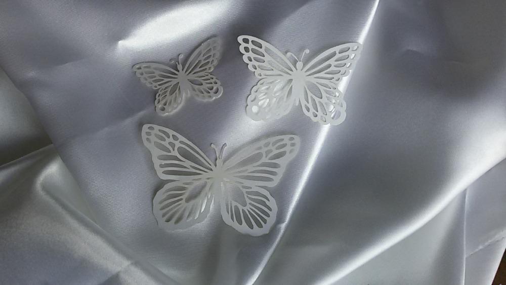 Motýl - Obrázek č. 3