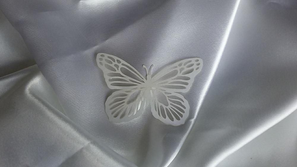 Motýl - Obrázek č. 4