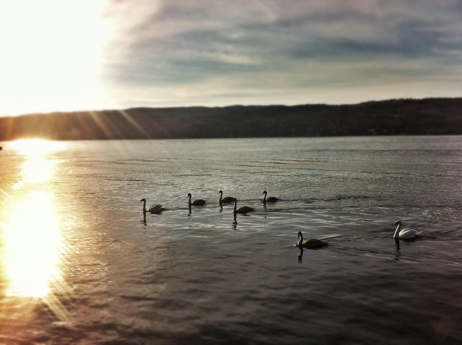 Norway from my lens ... - Obrázok č. 127