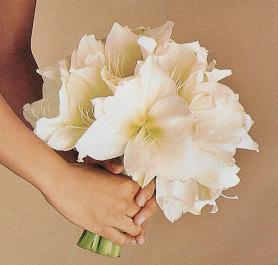 Bude to úžasné!!!!! - jednoduchá, neviete čo sú to za kvety?