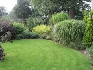 Nějaká ta tráva taky bude :-)