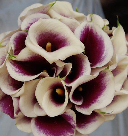 Svadobné kytičky - Obrázok č. 56