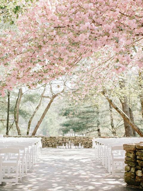 Čaro jarnej svadby - Obrázok č. 63