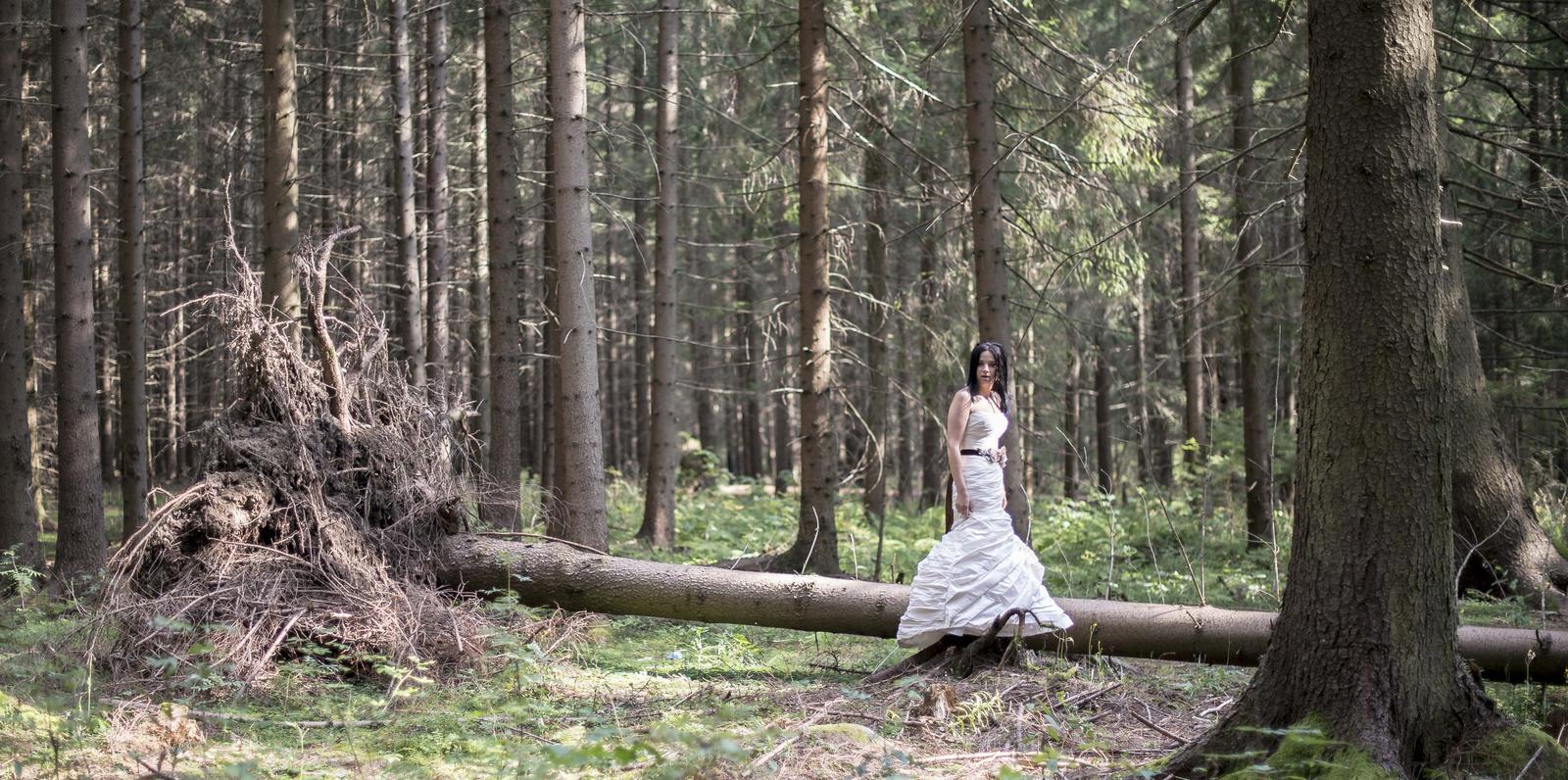 @lenulka85 Dobrý, ako fotograf... - Obrázok č. 3